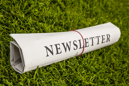 newsletter rolled up laying in the grass